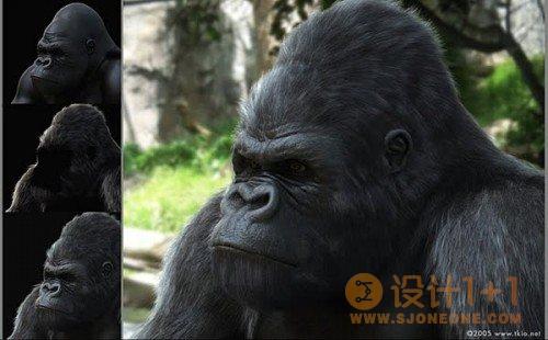 25张逼真的动物CG作品