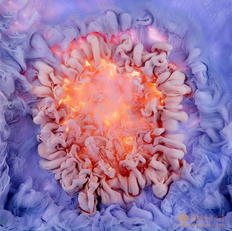 Mark Mawson:水中绽放的绚丽花朵